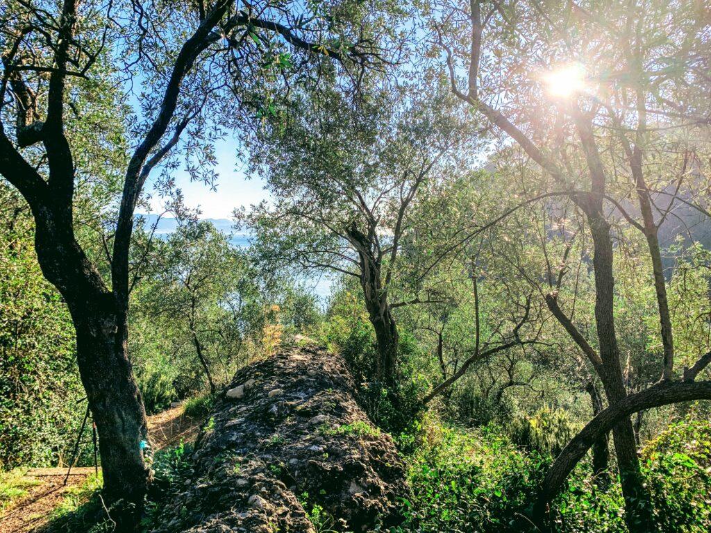 Parco Portofino Vegetazione