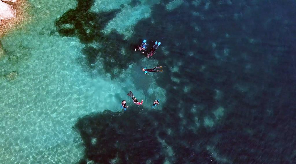 Snorkeling Portofino